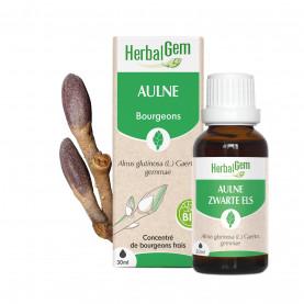 AULNE - 15 ml | Herbalgem