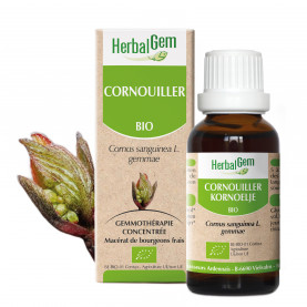 CORNOUILLER - 15 ml | Herbalgem