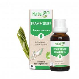FRAMBOISIER - 15 ml | Herbalgem