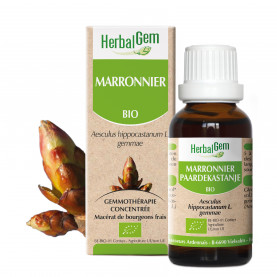MARRONNIER - 15 ml | Herbalgem