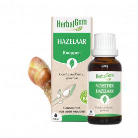 HAZELAAR - 15 ml   Herbalgem