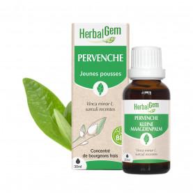 PERVENCHE - 15 ml | Herbalgem