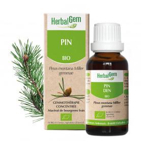 PIN DES MONTAGNES - 15 ml | Herbalgem