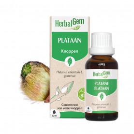 PLATAAN - 15 ml | Herbalgem