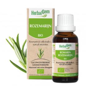 ROZEMARIJN - 15 ml   Herbalgem