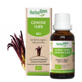 VLIER - 15 ml | Herbalgem