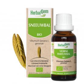 SNEEUWBAL - 15 ml   Herbalgem