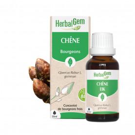 CHÊNE - 50 ml | Herbalgem