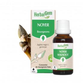 NOYER - 50 ml | Herbalgem