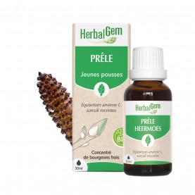 PRÊLE - 50 ml | Herbalgem