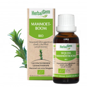 SEQUOIA - 50 ml   Herbalgem