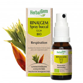 Rinalgem - Spray - 10 ml | Herbalgem